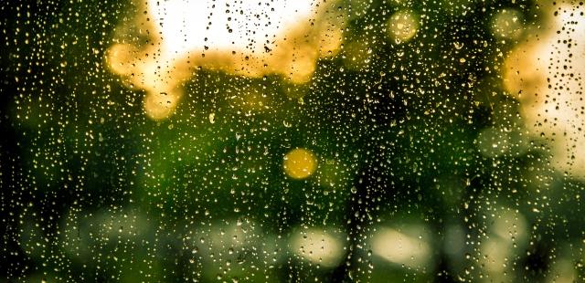 water-rain-raindrops-drops