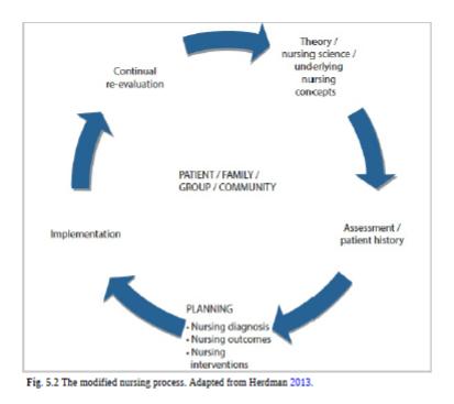 The modified Nursing Process (NANDA, 2018)